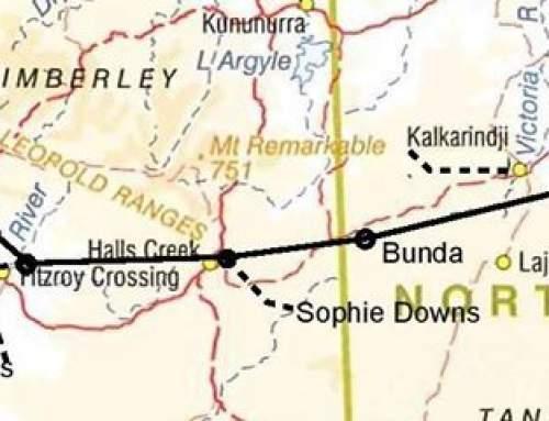 2015 Cattle Station Trip – Week 18