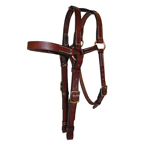 Leather Bridle, Barcoo, Extended Head