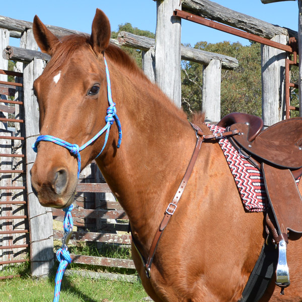 Leather Stockmans Breastplate