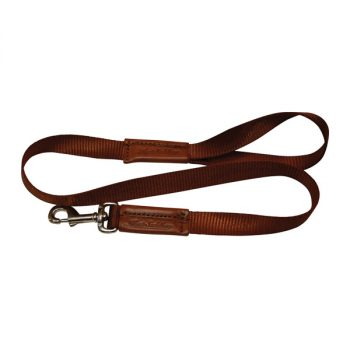 Dog Lead, Webbing, Solid Leather Handle