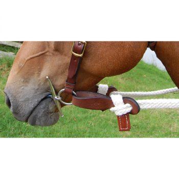Tubular Cotton Reins, Split on horse