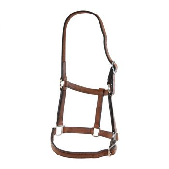 "Leather Halter, Edge Sewn, 1"" (25mm)"