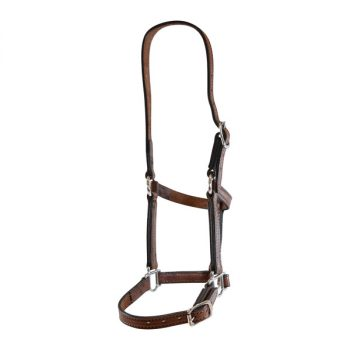 "Leather Halter, Edge Sewn, 3/4"" (19mm)"