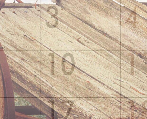2021 Calendar Photo Competition 6